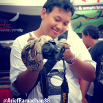 Arief Ramadhan